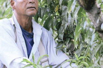 Adolfo Yebismea Jupa